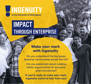 Ingenuity Programme 2021