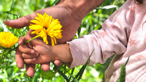 Nature connection is important for our mental health and wellbeing.